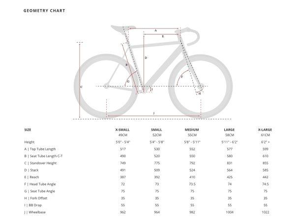 Aventon Cordoba Limited Edition Fixie Fahrrad Schwarsz-2441