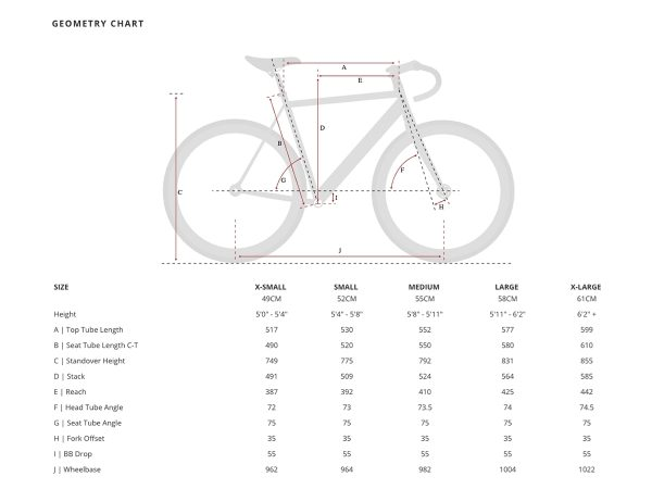Aventon Cordoba Limited Edition Fixie Fahrrad Polished-2466