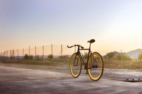 Pure Fix Original Fixie Fahrrad India